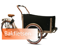 Bakfiets kopen bij Fietsenwinkel Rotterdam Troy bakfiets Vogue Bakfiets cangoo Bakfiets